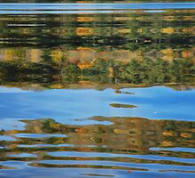 Reflections in water by julie08