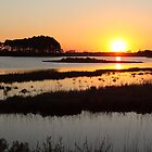 Sunrise at Chincoteague by John Wright