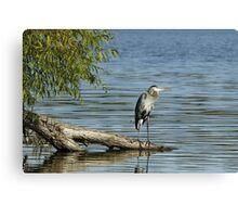 Nice fishing spot... Canvas Print