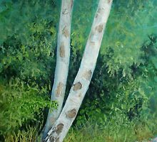 Silver Birch by Carole Russell