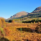 Autumns Glory, Argyll and Bute, Scotland by Jim Wilson