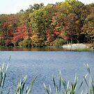 Fall at Lake Skanatati II by Sinclere