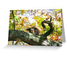 Upset Squirrel  Greeting Card