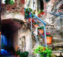Rustic Street in Corniglia by George Oze
