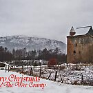 Wee County Christmas by Alan Findlater
