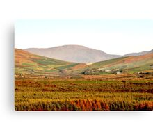 Autumn in the Valley,  Anascaul, Co. Kerry Canvas Print