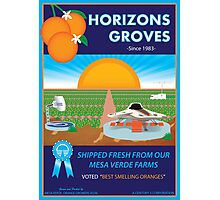 Horizons Groves Photographic Print