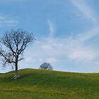 At Keld by WatscapePhoto