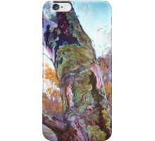 'Mother Nature's Tapestry' iPhone Case/Skin