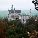 Neuschwanstein Castle, Bavaria, Germany  by Victoria  Jarrett