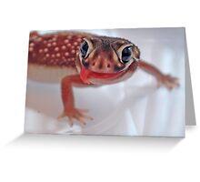 Tasty - Nephrurus levis levis  Greeting Card