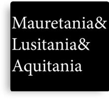 Mauretania and Lusitania and Aquitania Canvas Print