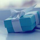 Little blue box by ShereenM