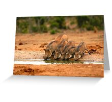 Warthog Family Greeting Card