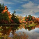 Autumn Reflections ~ Lake Jean by Lori Deiter