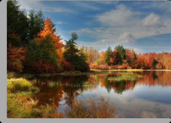 Autumn Reflections ~ Lake Jean by Lori Deiter