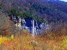 Steel Creek on Buffalo River, Arkansas 2 by David  Hughes