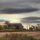 Whitevale Farm by Michael Kelly