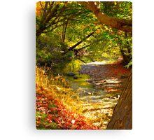 Austere Autumn Canvas Print