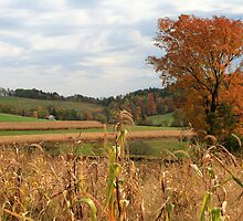 Autumn Fields in Pennsylvania by Geno Rugh
