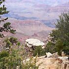 Arizona, The Grand Canyon U.S.A. by David  Hughes