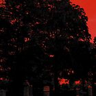 The sky is turning red...Fall into me, the sky&#x27;s crimson tears..Raining blood..From a lacerated sky..Now I shall reign in blood! by jammingene
