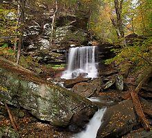 B. Reynolds Falls II (Autumn) by Tim Devine