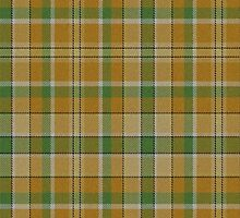 02881 Polk County, Iowa Tartan by Detnecs2013