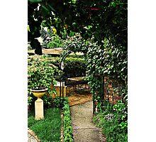 Garden Rooms Photographic Print