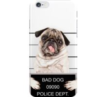 Dogs Pug Glance Animals puppy baby iPhone Case/Skin