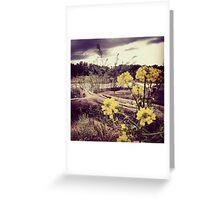 Fallen Log with Wildflowers Beside Riverbank Greeting Card
