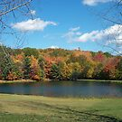 Autumn in Groundhog Country by teresa731
