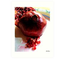 Katherine's Pomegranate Art Print