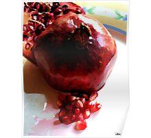 Katherine's Pomegranate Poster