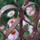 Grandma's Gate by Ami  Wilber-Mosher