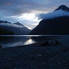 Dusk on the Milford Road, South Island, New Zealand by danjc7
