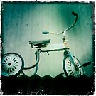 Old Tricycle by Steve Lovegrove
