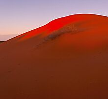 Majestic red dunes - South Australia by Tony Middleton