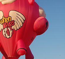 when pigs fly by Mleahy