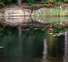 September Reflections in  Lake Mölnesjön by HELUA