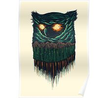 owl forest Poster