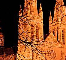 Golden Towers by Helen Vercoe