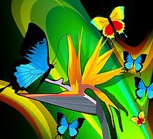Butterflies expressing romance by tillydesign
