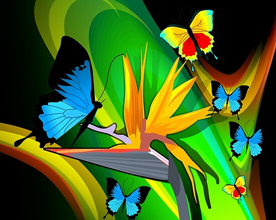 Butterflies expressing romance	 by tillydesign
