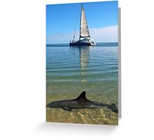 """Monkey Mia Magic"" Shark Bay, Western Australia Greeting Card"