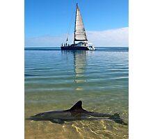 """Monkey Mia Magic"" Shark Bay, Western Australia Photographic Print"