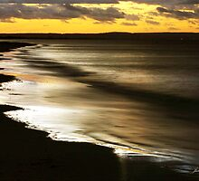 Reflections at Sunset by Julia Harwood