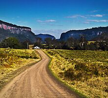 Condamine Gorge by gmpepprell