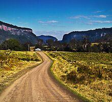 Condamine Gorge by gmpepprell