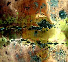 BETWEEN TWO WORLDS by laureen warrington